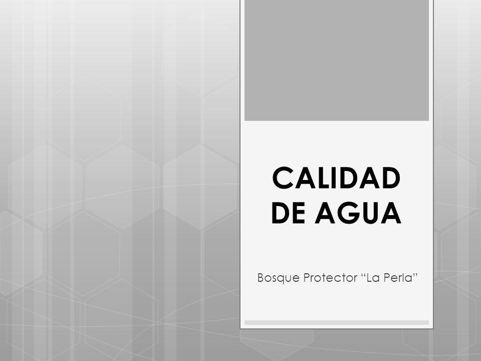 CALIDAD DE AGUA Bosque Protector La Perla