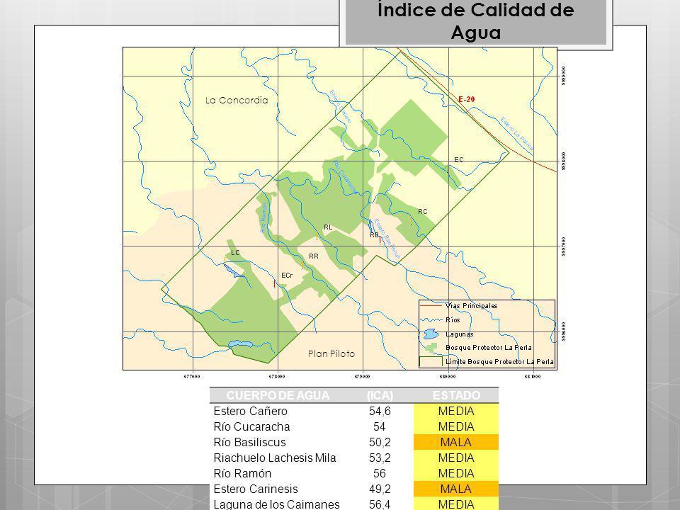 CUERPO DE AGUA(ICA)ESTADO Estero Cañero54,6MEDIA Río Cucaracha54MEDIA Río Basiliscus50,2MALA Riachuelo Lachesis Mila53,2MEDIA Río Ramón56MEDIA Estero Carinesis49,2MALA Laguna de los Caimanes56,4MEDIA Índice de Calidad de Agua Plan Piloto La Concordia