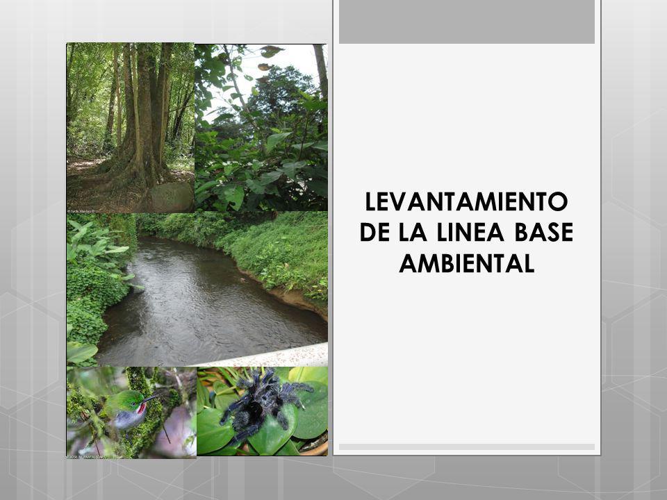 LEVANTAMIENTO DE LA LINEA BASE AMBIENTAL