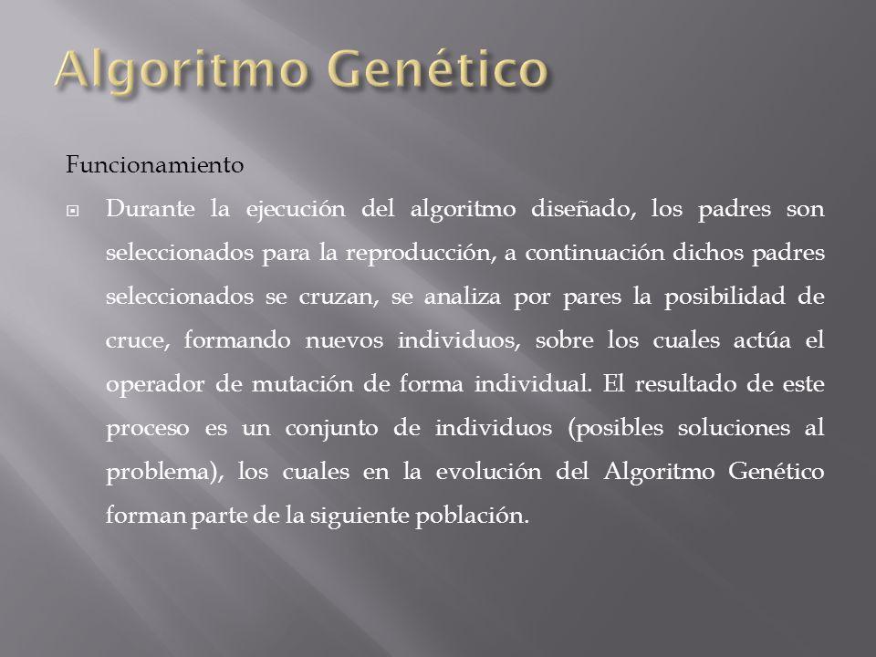El algoritmo genético diseñado trabajara sobre una población inicial de 20 individuos que es generada al azar.
