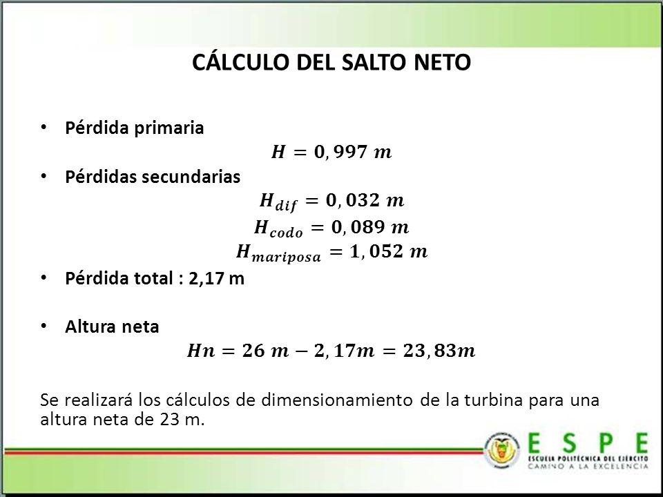 CÁLCULO DEL SALTO NETO