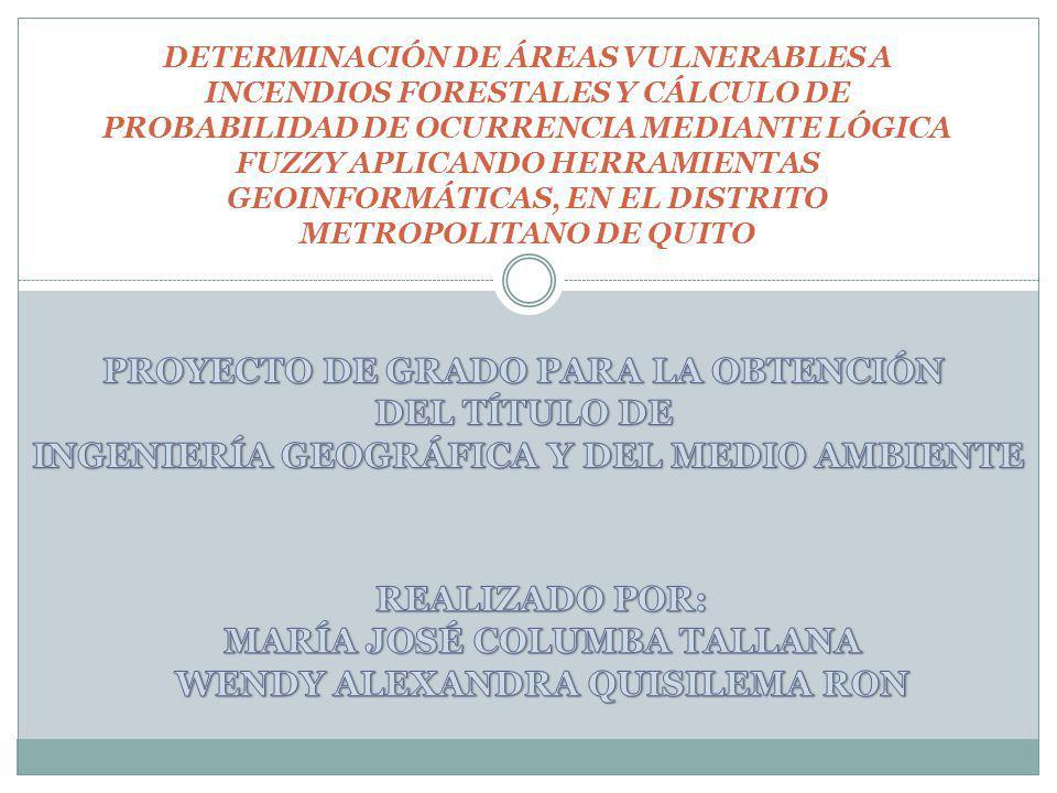 DETERMINACIÓN DE ÁREAS VULNERABLES A INCENDIOS FORESTALES Y CÁLCULO DE PROBABILIDAD DE OCURRENCIA MEDIANTE LÓGICA FUZZY APLICANDO HERRAMIENTAS GEOINFORMÁTICAS, EN EL DISTRITO METROPOLITANO DE QUITO