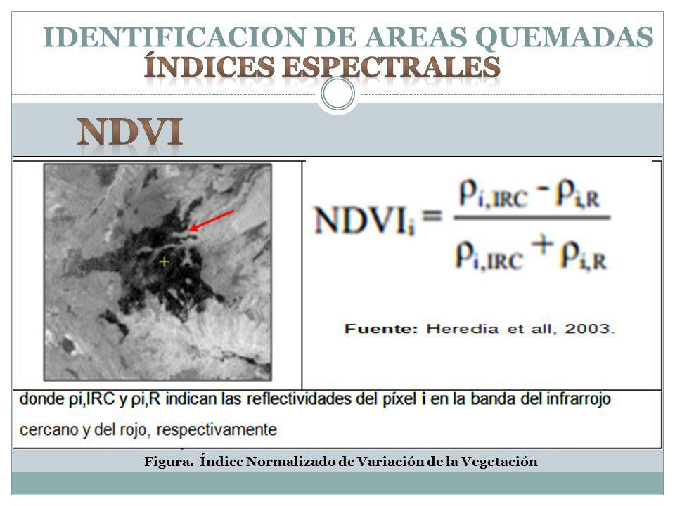 IDENTIFICACION DE AREAS QUEMADAS Figura. Índice Normalizado de Variación de la Vegetación