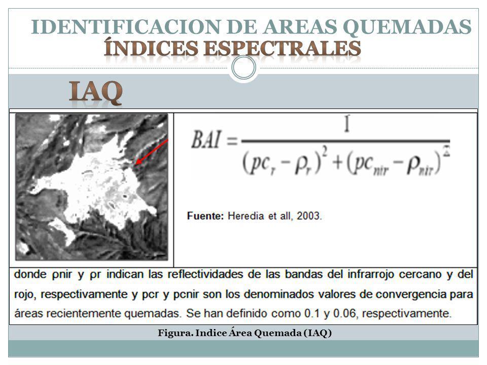 IDENTIFICACION DE AREAS QUEMADAS Figura. Indice Área Quemada (IAQ)