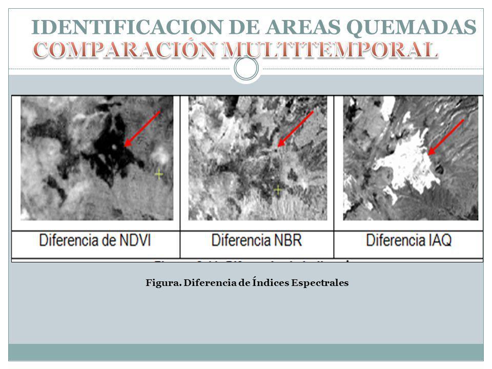 IDENTIFICACION DE AREAS QUEMADAS Figura. Diferencia de Índices Espectrales