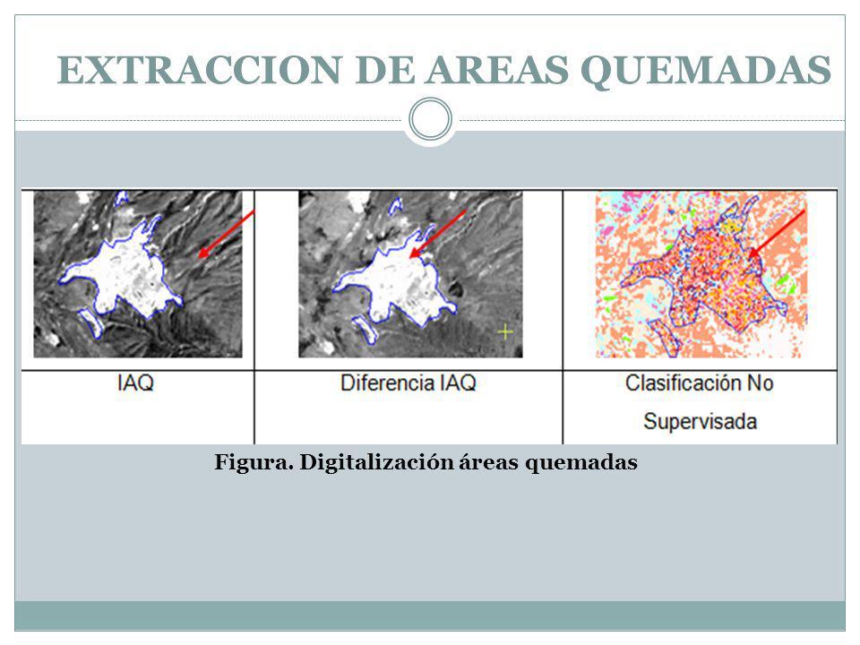 EXTRACCION DE AREAS QUEMADAS Figura. Digitalización áreas quemadas