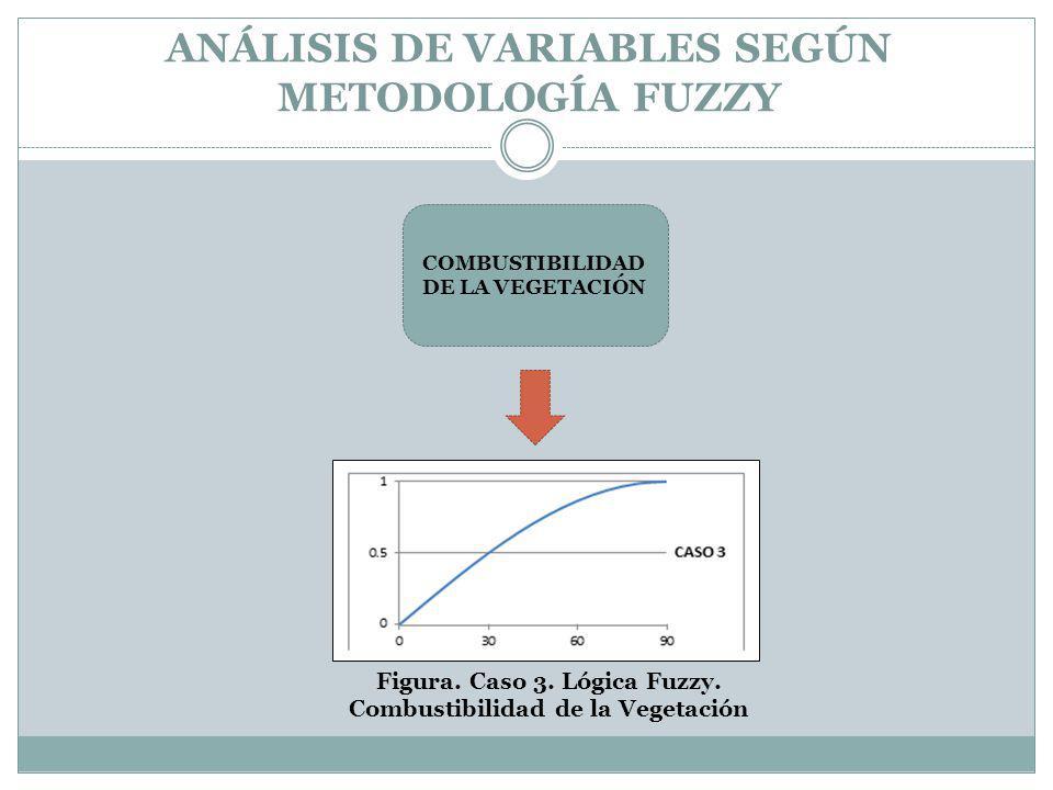 ANÁLISIS DE VARIABLES SEGÚN METODOLOGÍA FUZZY COMBUSTIBILIDAD DE LA VEGETACIÓN Figura. Caso 3. Lógica Fuzzy. Combustibilidad de la Vegetación