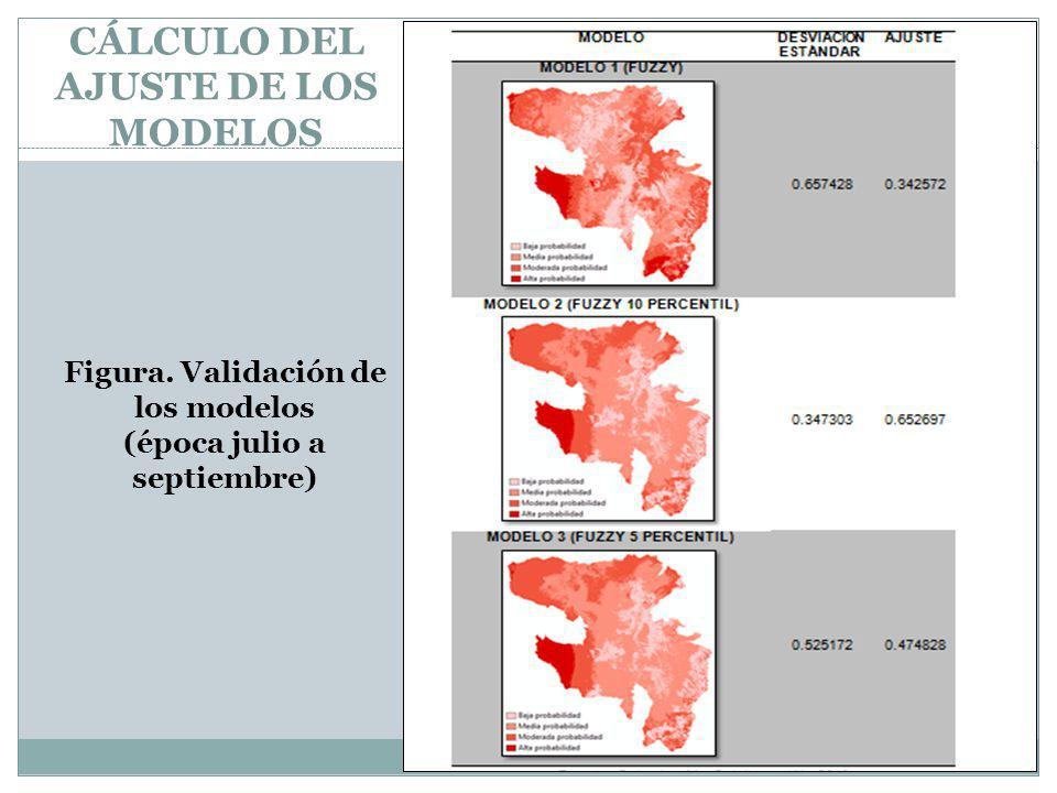 CÁLCULO DEL AJUSTE DE LOS MODELOS Figura. Validación de los modelos (época julio a septiembre)