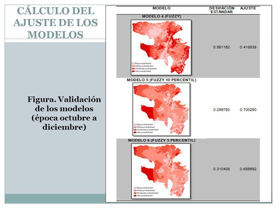 CÁLCULO DEL AJUSTE DE LOS MODELOS Figura. Validación de los modelos (época octubre a diciembre)