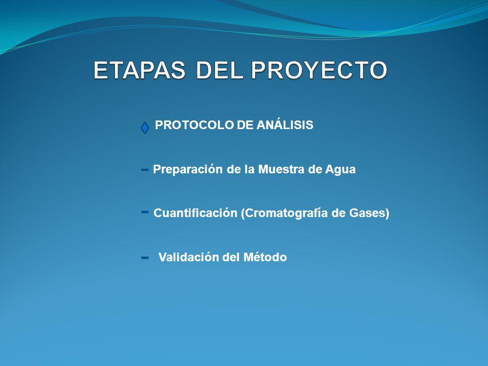 PROTOCOLO DE ANÁLISIS Preparación de la Muestra de Agua Cuantificación (Cromatografía de Gases) Validación del Método