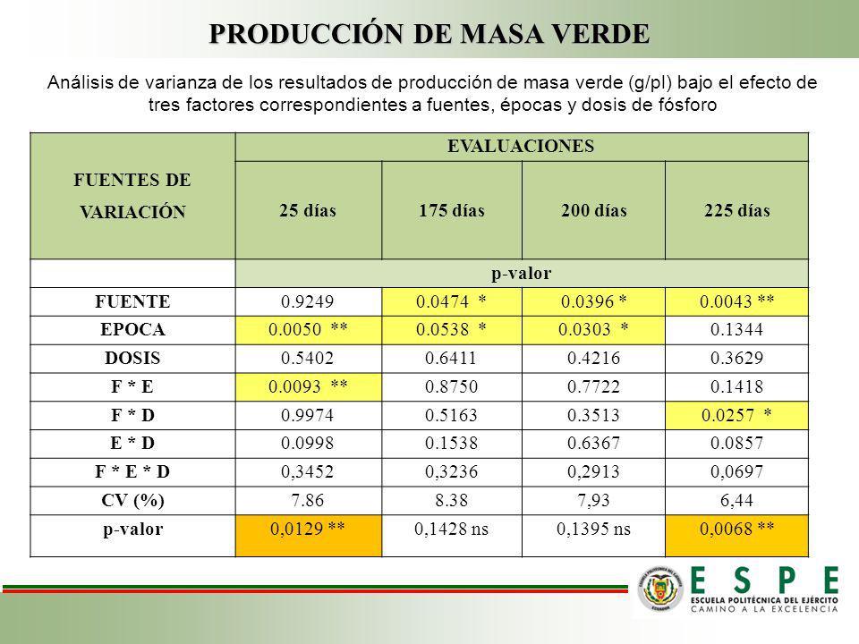 PRODUCCIÓN DE MASA VERDE FUENTES DE VARIACIÓN EVALUACIONES 25 días175 días200 días 225 días p-valor FUENTE0.92490.0474 *0.0396 *0.0043 ** EPOCA0.0050