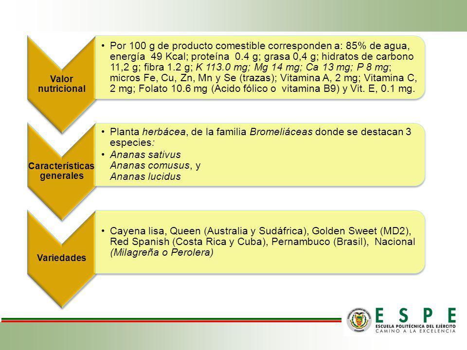 Valor nutricional Por 100 g de producto comestible corresponden a: 85% de agua, energía 49 Kcal; proteína 0.4 g; grasa 0,4 g; hidratos de carbono 11,2