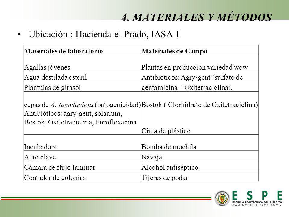 4. MATERIALES Y MÉTODOS Ubicación : Hacienda el Prado, IASA I Materiales de laboratorioMateriales de Campo Agallas jóvenesPlantas en producción varied