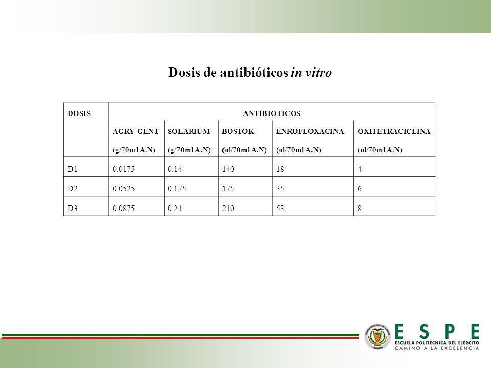 DOSISANTIBIOTICOS AGRY-GENT (g/70ml A.N) SOLARIUM (g/70ml A.N) BOSTOK (ul/70ml A.N) ENROFLOXACINA (ul/70ml A.N) OXITETRACICLINA (ul/70ml A.N) D10.01750.14140184 D20.05250.175175356 D30.08750.21210538 Dosis de antibióticos in vitro