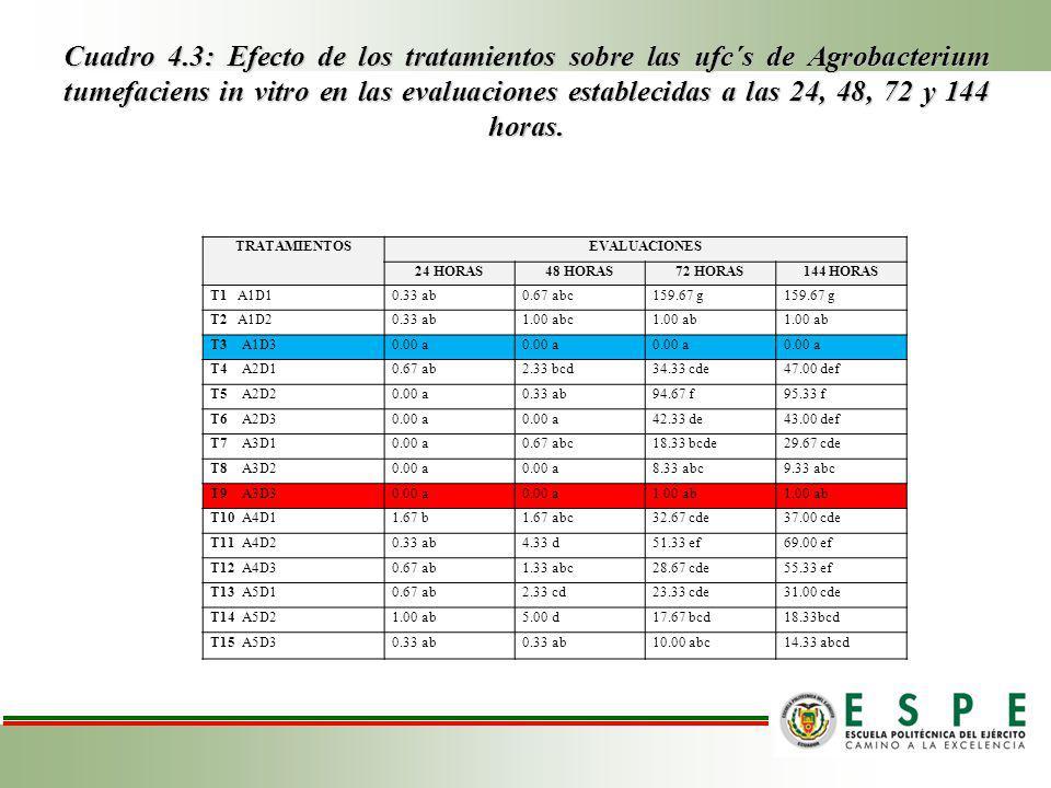 Cuadro 4.3: Efecto de los tratamientos sobre las ufc´s de Agrobacterium tumefaciens in vitro en las evaluaciones establecidas a las 24, 48, 72 y 144 horas.