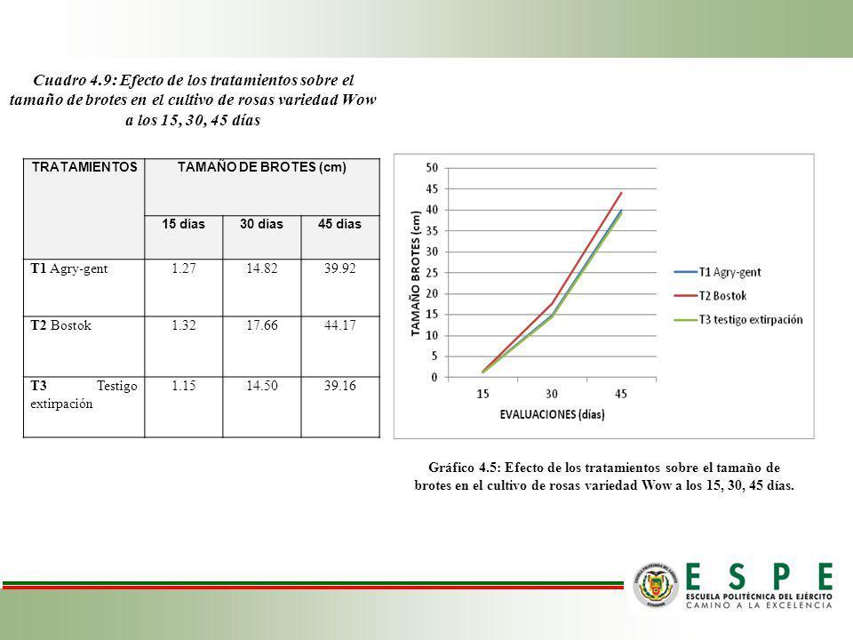 Cuadro 4.9: Efecto de los tratamientos sobre el tamaño de brotes en el cultivo de rosas variedad Wow a los 15, 30, 45 días TRATAMIENTOSTAMAÑO DE BROTES (cm) 15 días30 días45 días T1 Agry-gent1.2714.8239.92 T2 Bostok1.3217.6644.17 T3 Testigo extirpación 1.1514.5039.16 Gráfico 4.5: Efecto de los tratamientos sobre el tamaño de brotes en el cultivo de rosas variedad Wow a los 15, 30, 45 días.