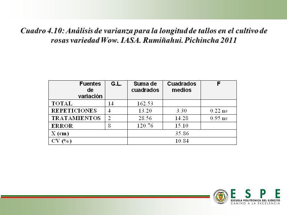 Cuadro 4.10: Análisis de varianza para la longitud de tallos en el cultivo de rosas variedad Wow.