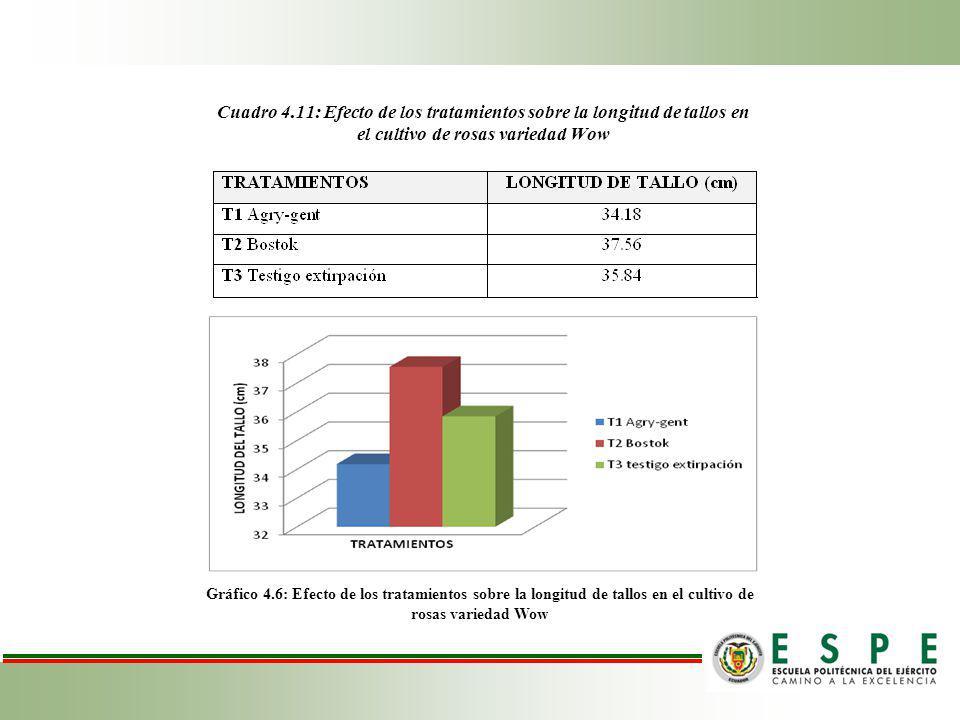 Cuadro 4.11: Efecto de los tratamientos sobre la longitud de tallos en el cultivo de rosas variedad Wow Gráfico 4.6: Efecto de los tratamientos sobre la longitud de tallos en el cultivo de rosas variedad Wow