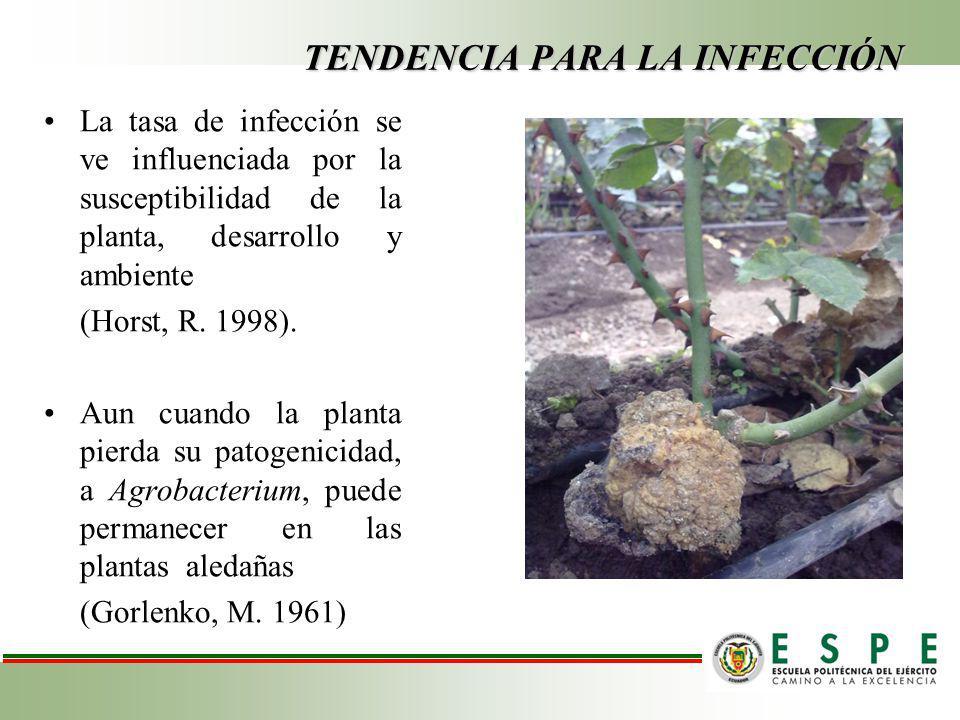 TENDENCIA PARA LA INFECCIÓN La tasa de infección se ve influenciada por la susceptibilidad de la planta, desarrollo y ambiente (Horst, R.