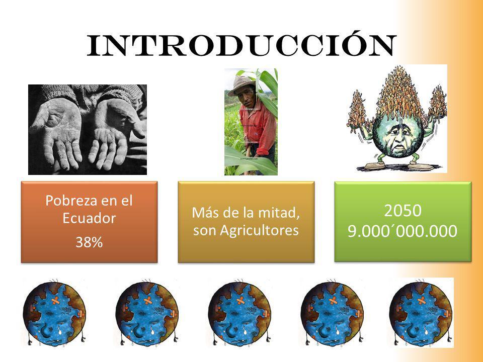 INTRODUCCIÓN Pobreza en el Ecuador 38% Más de la mitad, son Agricultores 2050 9.000´000.000