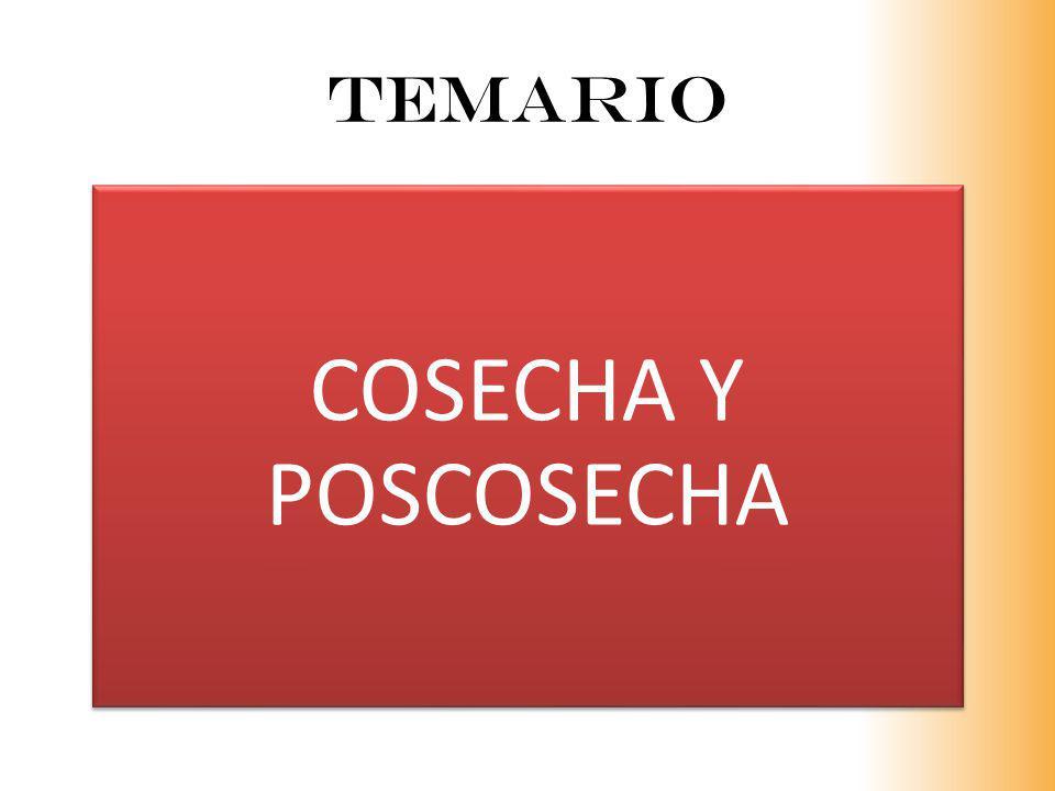 TEMArio COSECHA Y POSCOSECHA