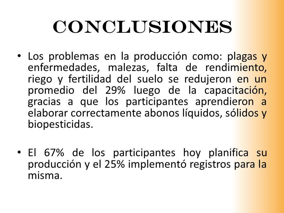 CONCLUSIONES Los problemas en la producción como: plagas y enfermedades, malezas, falta de rendimiento, riego y fertilidad del suelo se redujeron en u