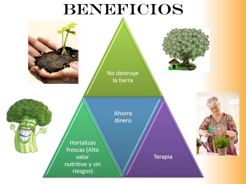Beneficios No destruye la tierra Hortalizas frescas (Alto valor nutritivo y sin riesgos) Ahorra dinero Terapia