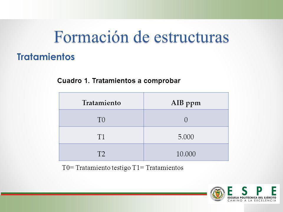 Formación de estructuras Tratamientos TratamientoAIB ppm T00 T15.000 T210.000 Cuadro 1. Tratamientos a comprobar T0= Tratamiento testigo T1= Tratamien