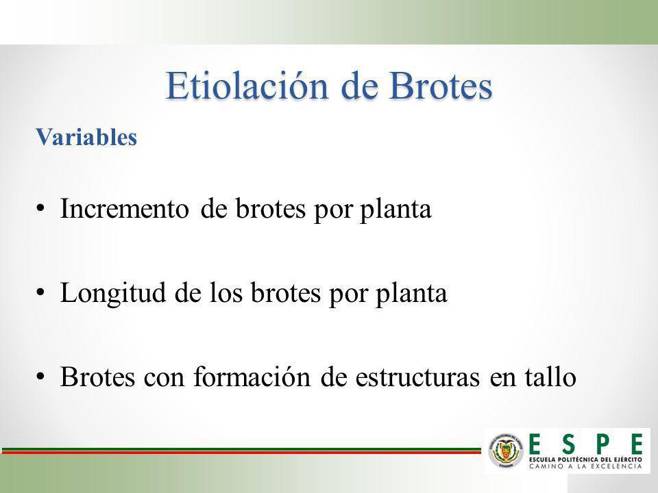 Etiolación de Brotes Variables Incremento de brotes por planta Longitud de los brotes por planta Brotes con formación de estructuras en tallo