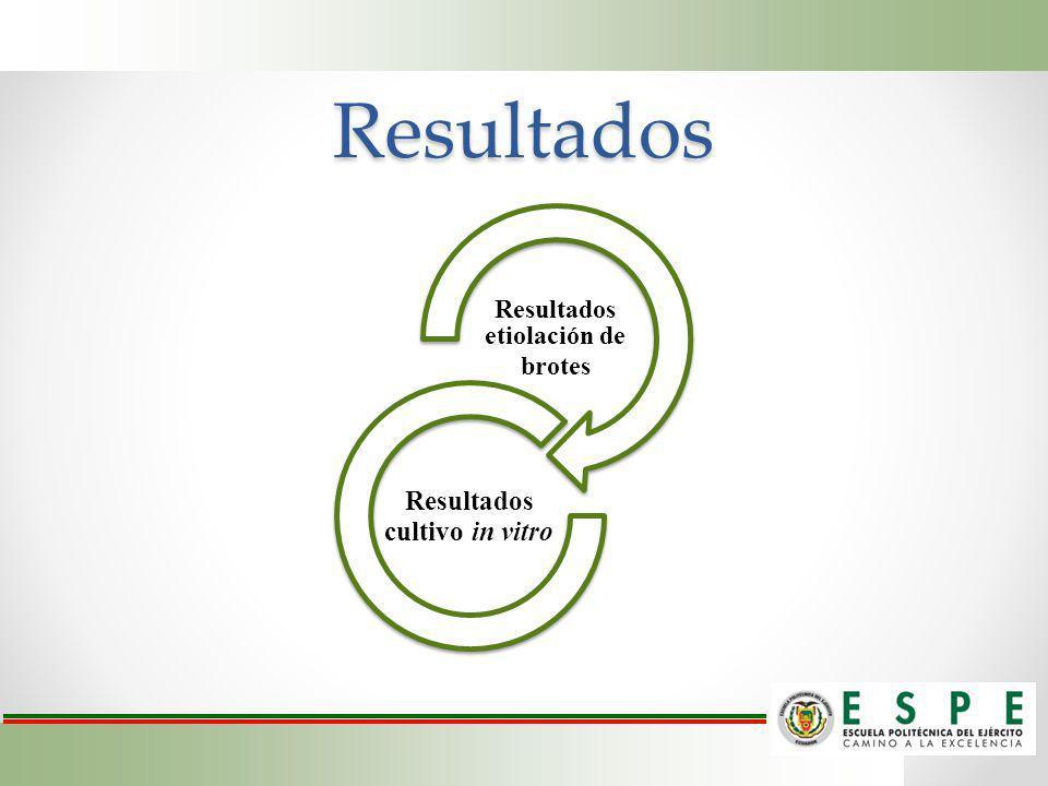 Resultados Resultados etiolación de brotes Resultados cultivo in vitro