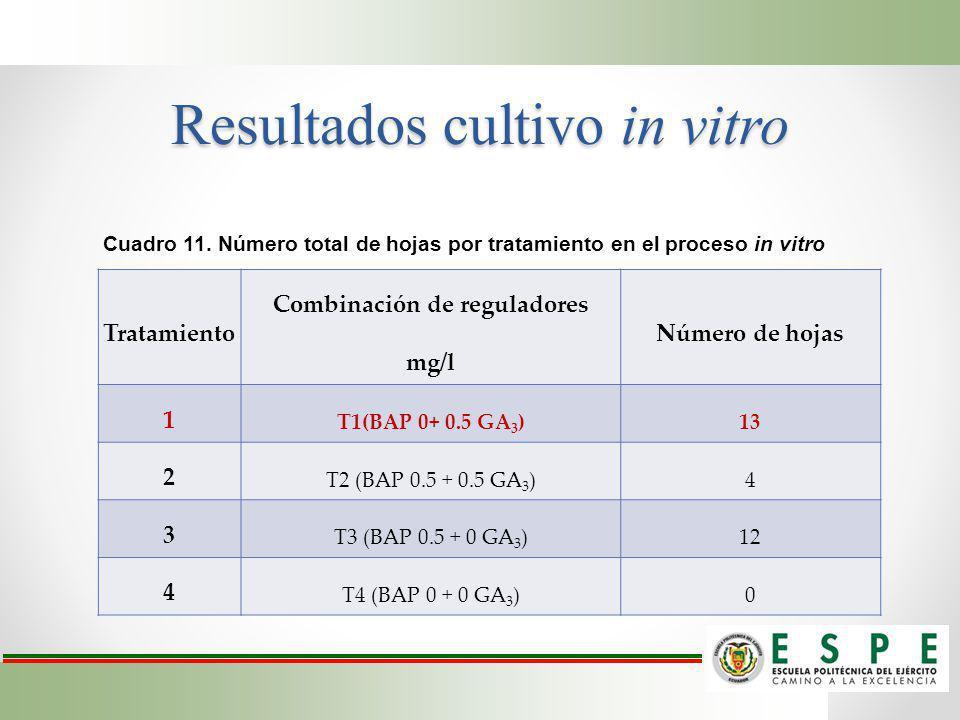 Resultados cultivo in vitro Tratamiento Combinación de reguladores mg/l Número de hojas 1 T1(BAP 0+ 0.5 GA 3 )13 2 T2 (BAP 0.5 + 0.5 GA 3 )4 3 T3 (BAP