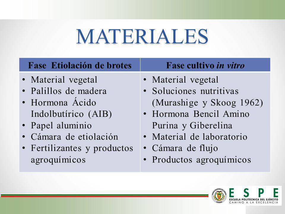 MATERIALES Fase Etiolación de brotesFase cultivo in vitro Material vegetal Palillos de madera Hormona Ácido Indolbutírico (AIB) Papel aluminio Cámara
