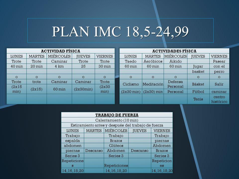 PLAN IMC 18,5-24,99