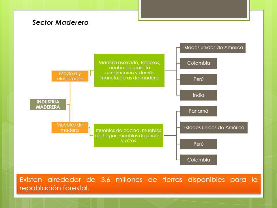 Sector Maderero Los productos de la industria maderera se agrupan en:.. Principales destinos:,,,, Alemania y Brasil.. Principales destinos:,,,, Venezu