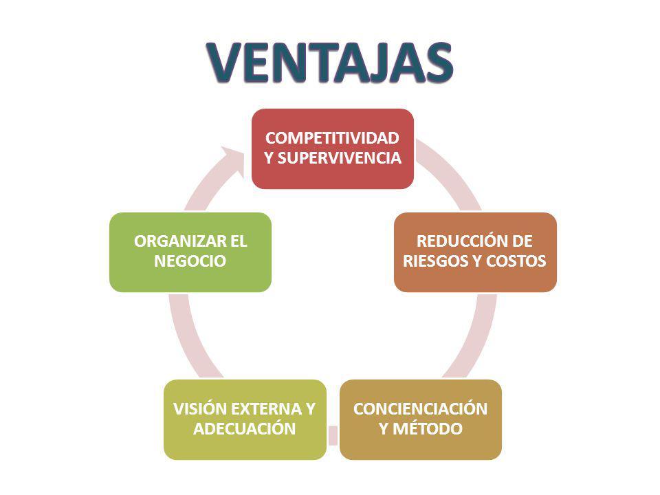COMPETITIVIDAD Y SUPERVIVENCIA REDUCCIÓN DE RIESGOS Y COSTOS CONCIENCIACIÓN Y MÉTODO VISIÓN EXTERNA Y ADECUACIÓN ORGANIZAR EL NEGOCIO