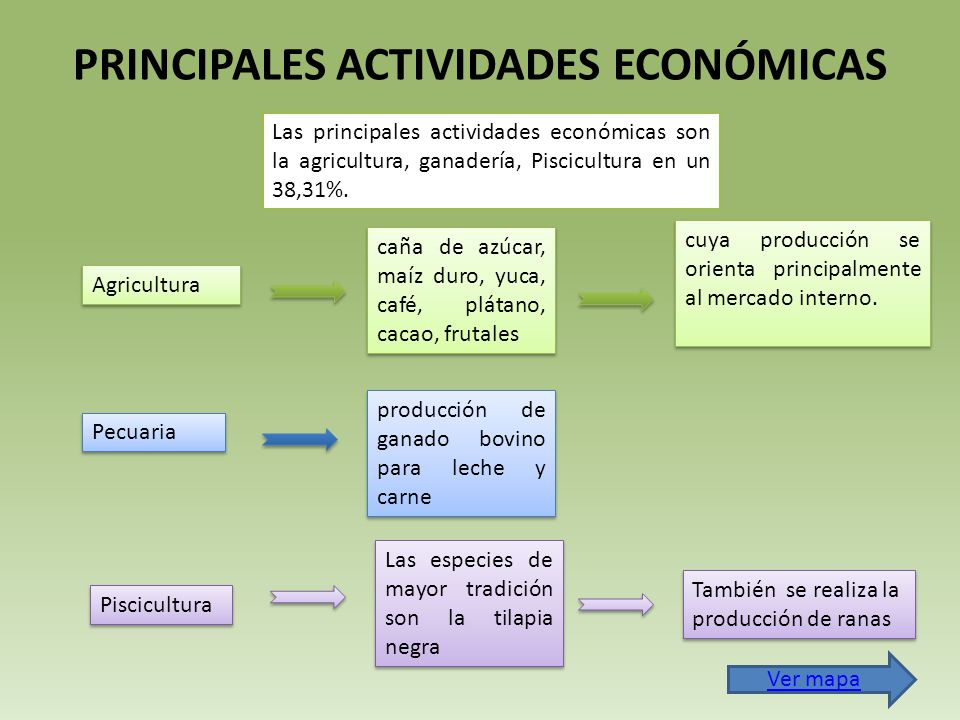 PRINCIPALES ACTIVIDADES ECONÓMICAS Las principales actividades económicas son la agricultura, ganadería, Piscicultura en un 38,31%.