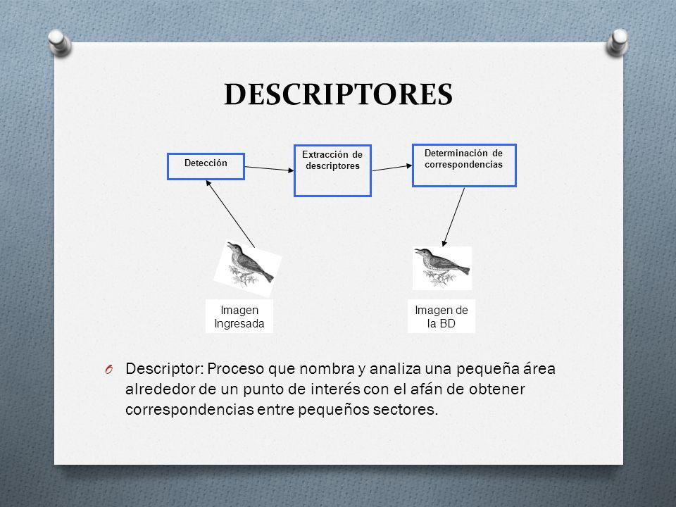 DESCRIPTORES O Descriptor: Proceso que nombra y analiza una pequeña área alrededor de un punto de interés con el afán de obtener correspondencias entr