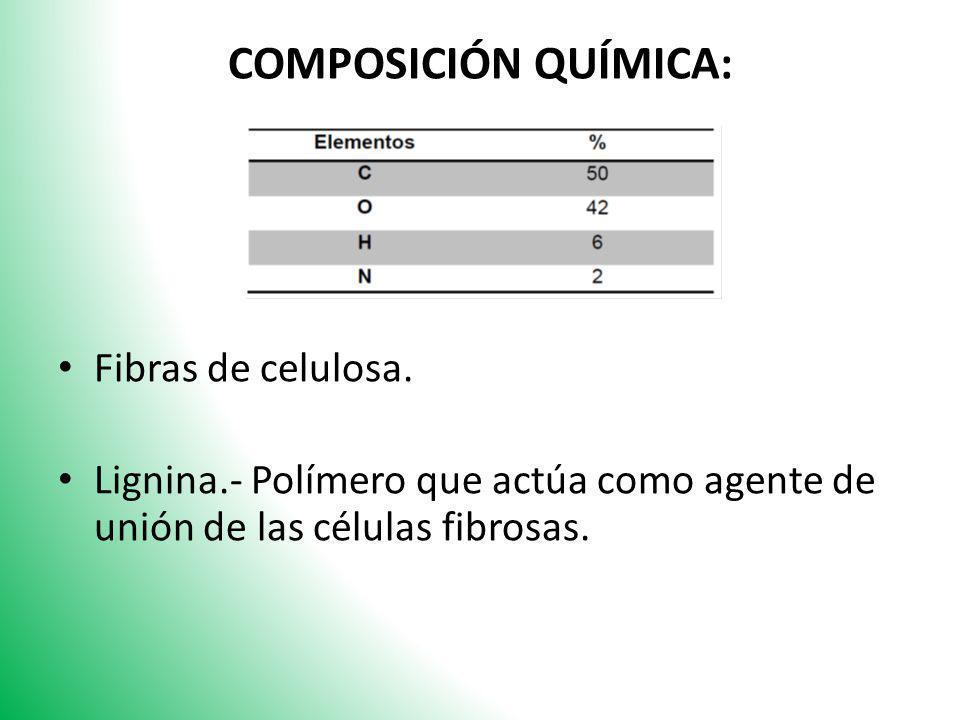 COMPOSICIÓN QUÍMICA: Fibras de celulosa. Lignina.- Polímero que actúa como agente de unión de las células fibrosas.