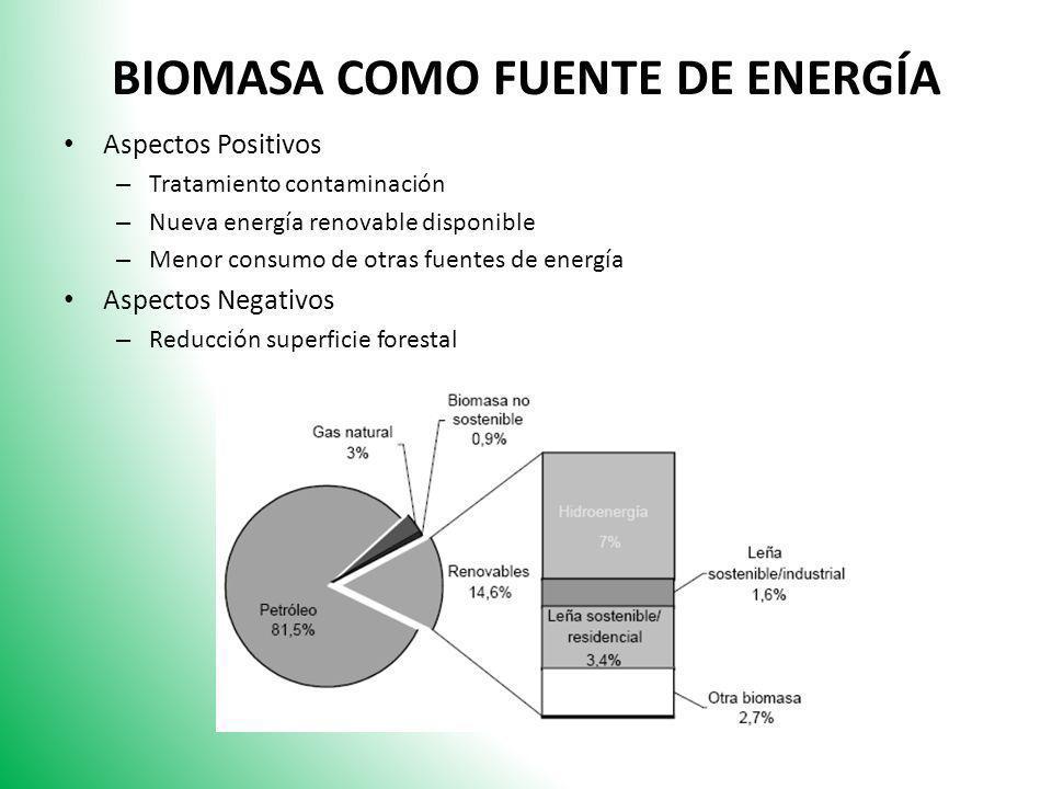 BIOMASA COMO FUENTE DE ENERGÍA Aspectos Positivos – Tratamiento contaminación – Nueva energía renovable disponible – Menor consumo de otras fuentes de