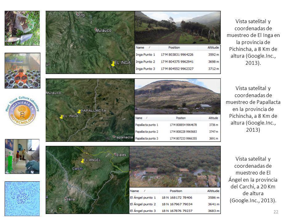 Vista satelital y coordenadas de muestreo de El Inga en la provincia de Pichincha, a 8 Km de altura (Google.Inc., 2013).