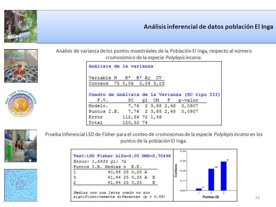 Análisis inferencial de datos población El Inga Análisis de varianza de los puntos muestréales de la Población El Inga, respecto al número cromosómico de la especie Polylepis incana.