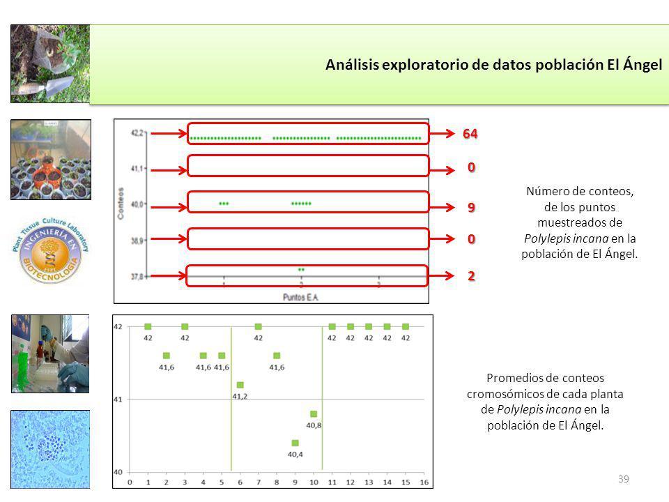 Análisis exploratorio de datos población El Ángel Número de conteos, de los puntos muestreados de Polylepis incana en la población de El Ángel.