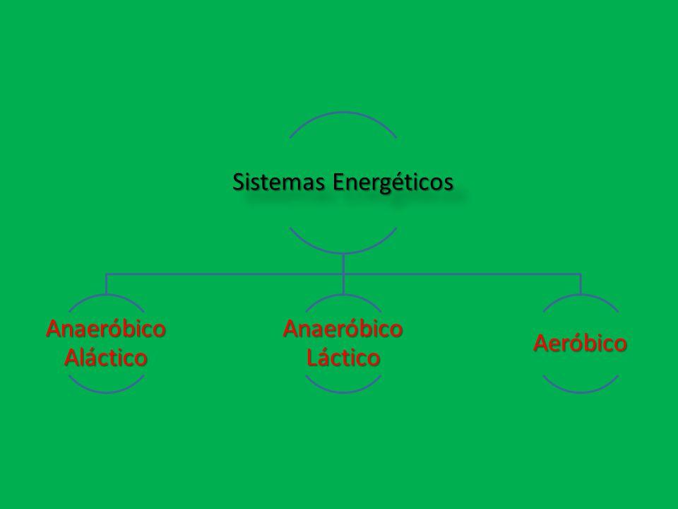 Sistemas Energéticos Anaeróbico Aláctico Anaeróbico Láctico Aeróbico