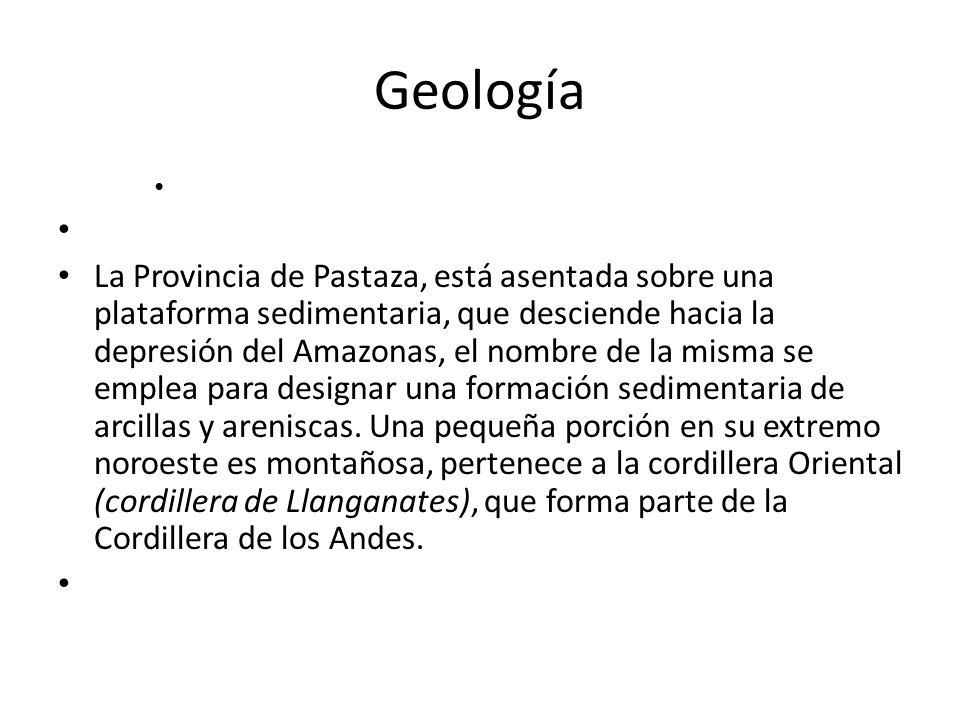 Geología La Provincia de Pastaza, está asentada sobre una plataforma sedimentaria, que desciende hacia la depresión del Amazonas, el nombre de la mism