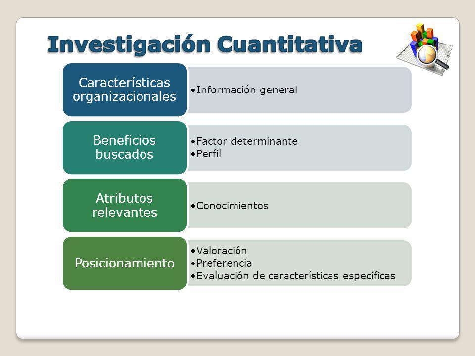Información general Características organizacionales Factor determinante Perfil Beneficios buscados Conocimientos Atributos relevantes Valoración Pref