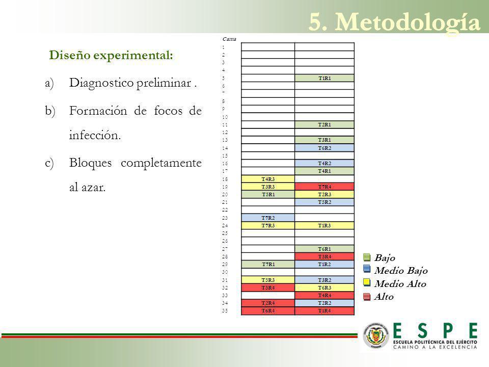 Diseño experimental: a)Diagnostico preliminar.b)Formación de focos de infección.