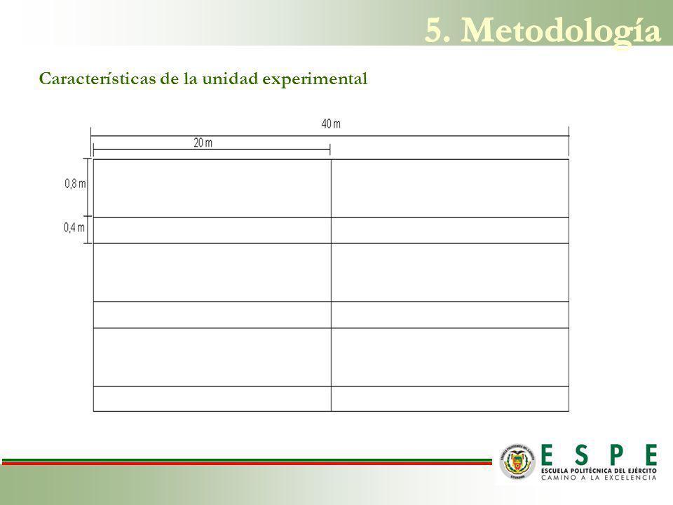 Características de la unidad experimental