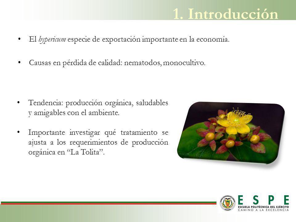 Producción exportable