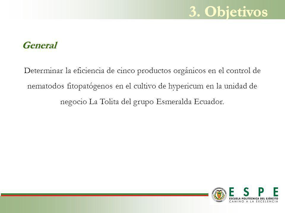 Determinar la eficiencia de cinco productos orgánicos en el control de nematodos fitopatógenos en el cultivo de hypericum en la unidad de negocio La Tolita del grupo Esmeralda Ecuador.