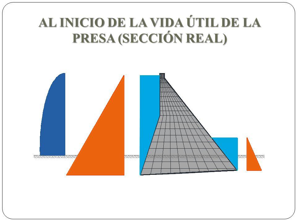 AL INICIO DE LA VIDA ÚTIL DE LA PRESA (SECCIÓN REAL)